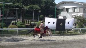 「第47回 愛馬の日」(中)(19)
