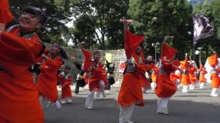 様々な演舞を様々な地点で楽しめた「第2回東京舞祭『秋』」 ~4日:新宿中央公園 ~(4)