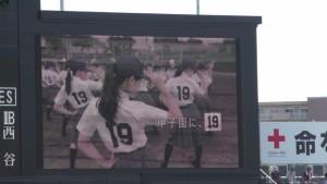 「第97回全国高校野球選手権大会」を見に行ってきました!(15)~甲子園焼きそば~(9)