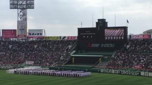 センバツ2016を見に行ったぞ!~開会式(上)~(2)6