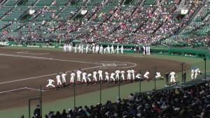 センバツ2016を見に行ったぞ!~土佐 VS 大阪桐蔭(下)~(23)3