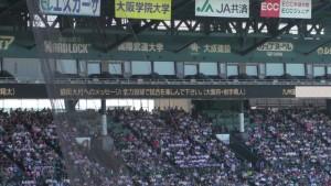 夏の甲子園2016~大会中見たモノ~(32)3