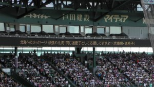決勝「作新学院 - 北海」~(29)25