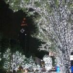 新宿イルミネーション3