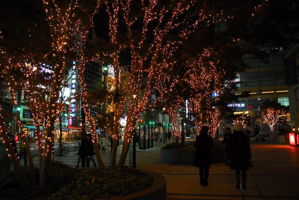 東京ミッドタウン・イルミネーション「ミッドタウン クリスマス 2008」(上)