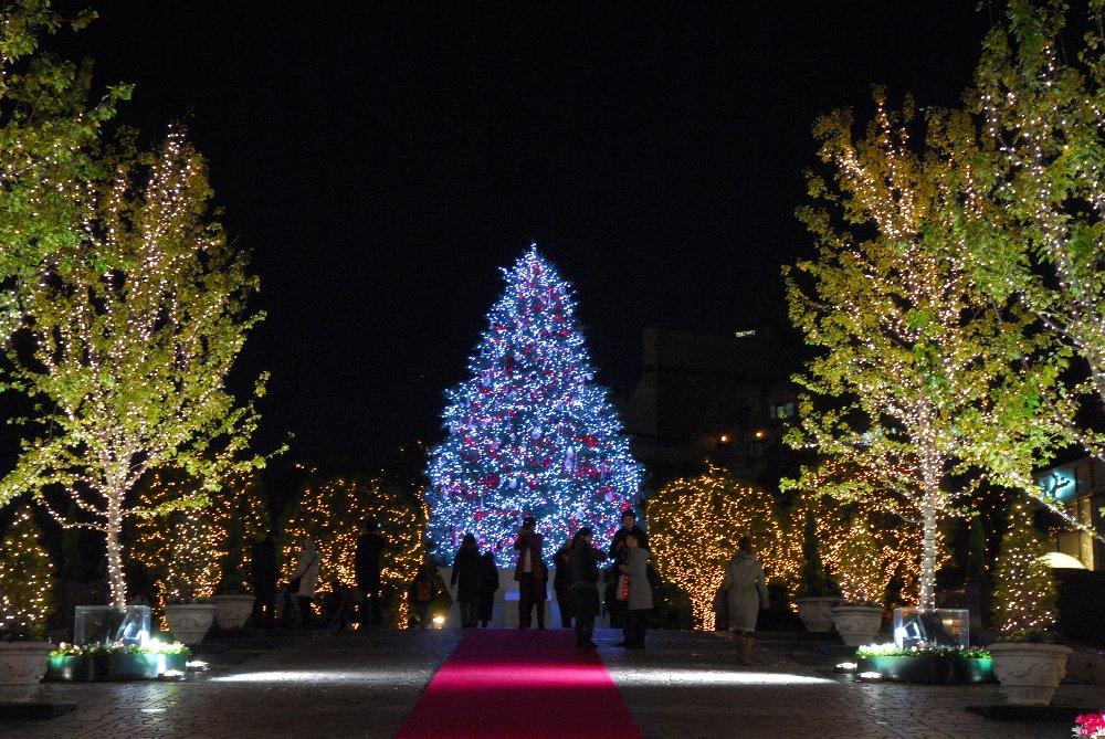 豪華なシャンデリアがクリスマスを盛り上げる!