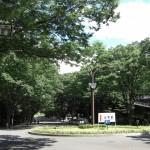 東海大学1