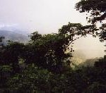 2002年 九州への旅(8)7日目(2002/08/11)
