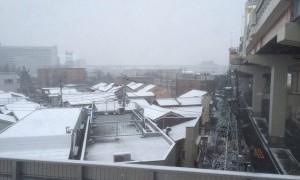 東京でここまで雪が降ったのは初めて見た